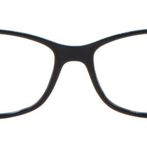 Amaryllis Noir et ecaille noir / blanc